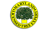 Licensed Marlyand State Tree Experts